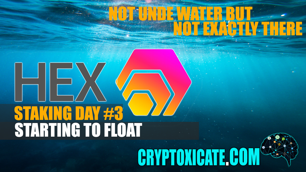 DOWN 13.14% SINCE STARTED TO STAKE – HEX STAKING DAY #003