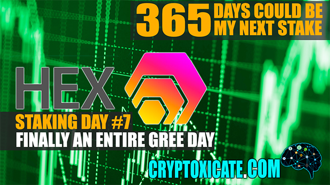 FIRST STAKING ALMOST DONE – HEX STAKING DAY #007