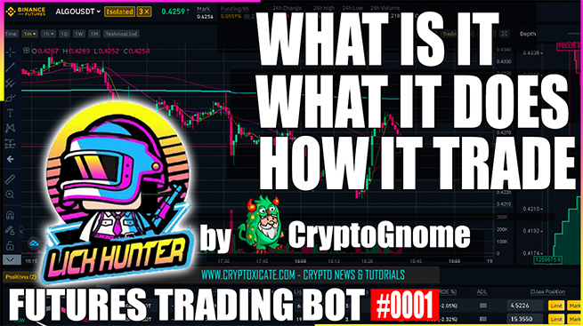 HOW LIQUIDATION HUNTER TRADING BOT PLACE ORDERS