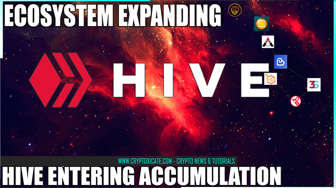 Hive Accumulation Phase - Price Settles