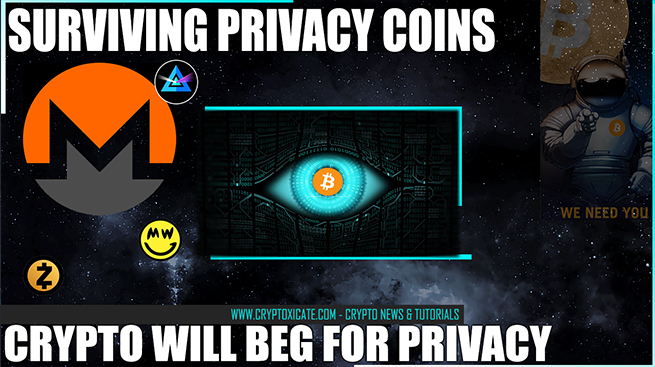 Surviving Privacy Coins WXMR - BTC $250K Will BEG For Privacy